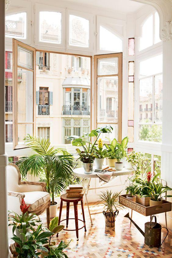 Razones para decorar con plantas