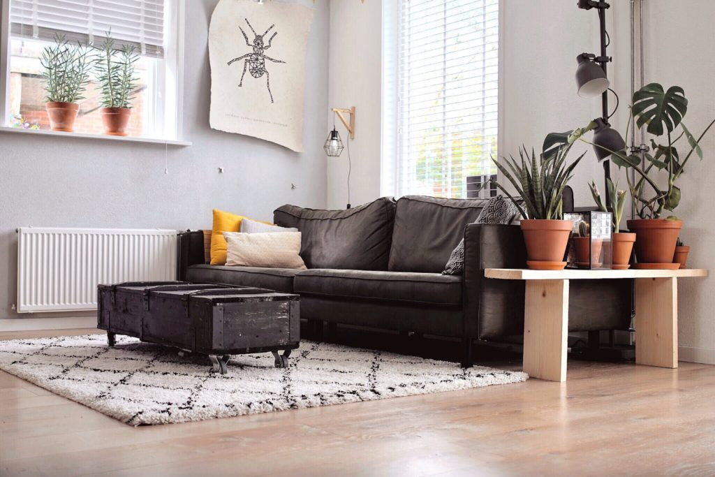 elegir muebles